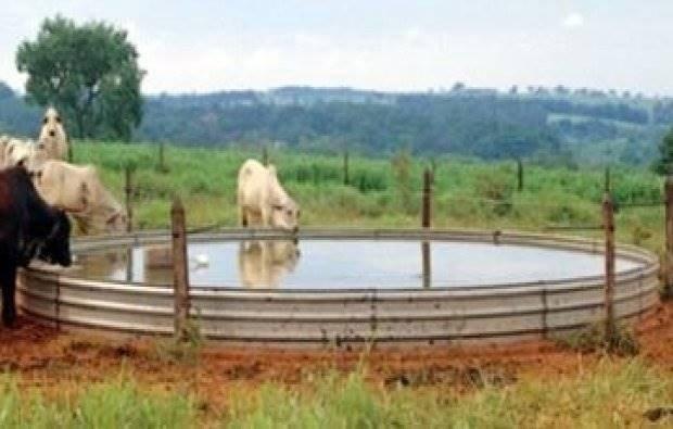 Bebedouro para gado tipo australiano